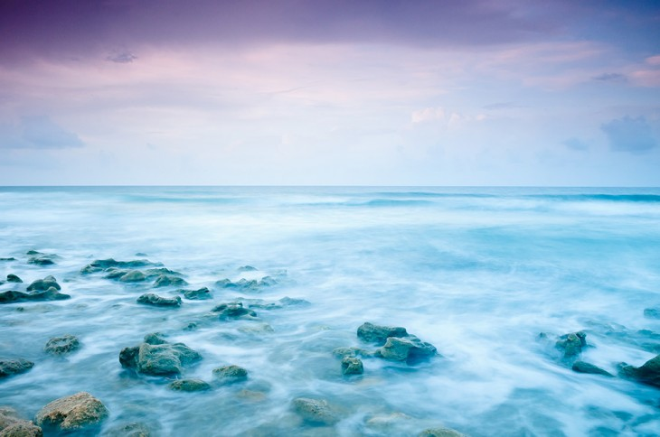 The Rose Sea