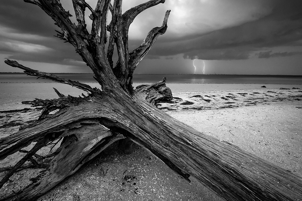 Click to enlarge - The Coming Storm - Eric Clay Fine Art Photography
