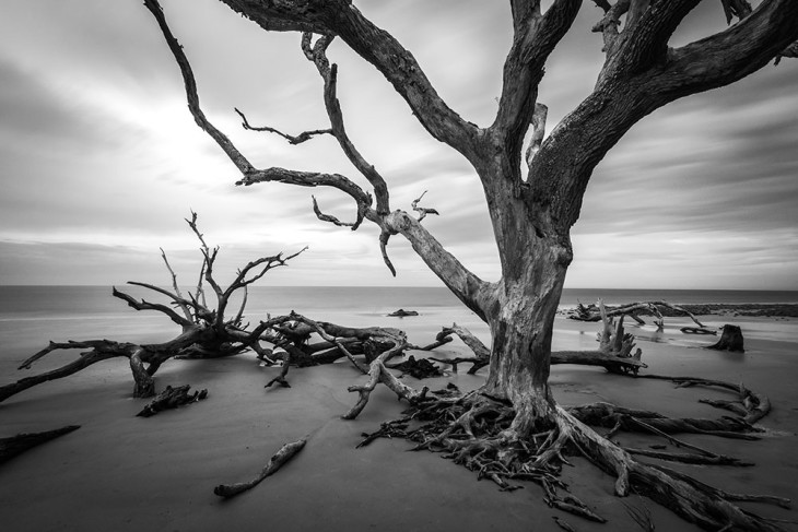 Jekyll Island 1
