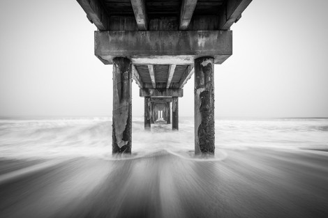 Black And White Florida Landscape Photography